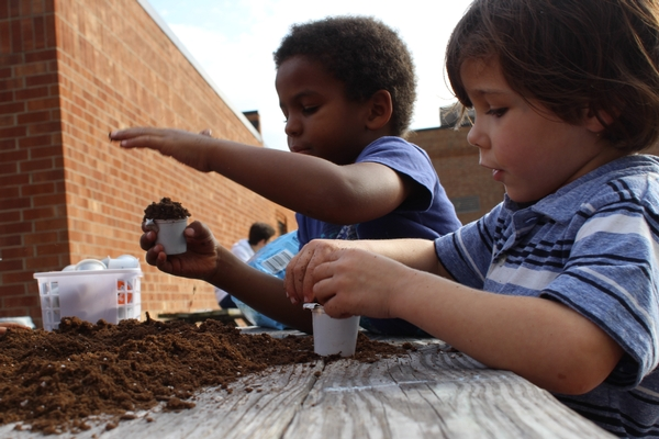 Students plant seeds in cups